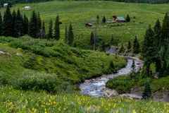 Czubaty butte Colorado góry krajobraz i wildflowers obrazy royalty free