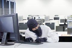 Czujny rabuś sieka komputer w biurze zdjęcie stock