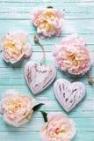 Czuli różowi peonia kwiaty i dwa dekoracyjnego serca na turqu Obraz Stock