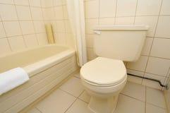 czyścić luksusową toaletę Zdjęcie Stock