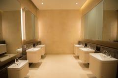 Czyści jawną toaletę Obraz Royalty Free