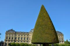 Czyści rżniętych drzewa w podwórzowym ogródzie Wuerzburg siedziba o fotografia royalty free