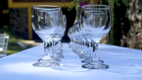 Czyści szklane filiżanki w ogródzie Fotografia Stock