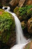 Czysta świeżej wody siklawa biega nad mechatymi skałami w lesie Fotografia Stock