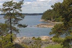 czysta natura Szwecji Fotografia Royalty Free