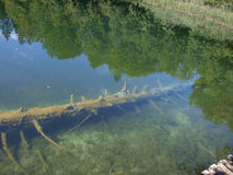 Czysta woda, park narodowy - Plitvice jeziora, Zdjęcia Royalty Free