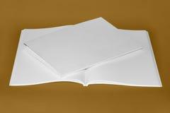 czyste białe książki Zdjęcie Royalty Free