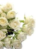 Czysty biały bukiet róże na białej przestrzeni dla teksta i tle Obrazy Stock