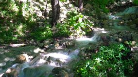 Czysty halny wiosny spływanie głęboko w górach zdjęcie wideo