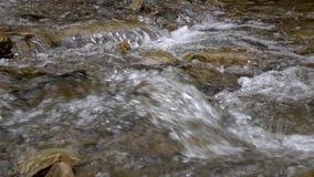 Czysty strumień halna rzeka wśród kamienistych wybrzeży Czasu upływ zbiory