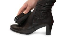 czyszczenie buta ręce kobiecej gąbka Obrazy Stock