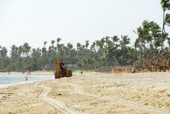 czyszczenie lasów tropikalnych na plaży Obrazy Royalty Free