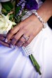 czytelniczy ślubowania Obraz Royalty Free