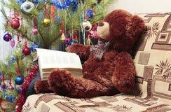 Czytelniczy niedźwiedź, choinka Fotografia Royalty Free