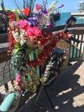 Décoration велосипеда Key West стоковое фото