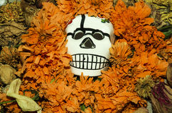 DÃa de Muertos-Día de los muertos Imágenes de archivo libres de regalías
