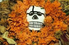 DÃa de Muertos-Jour des morts Images libres de droits