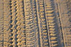 Däck- eller gummihjulspår i gyttja Royaltyfria Bilder
