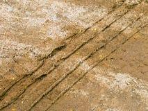 Däckfläckar på sanden royaltyfri bild