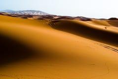 Dämmerung in den Dünen, Marokko lizenzfreie stockbilder