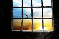 Dämmerung gesehen durch Gefängnisfenster Stockbild