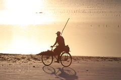 Dämmerung von Sansibar Stockfotos