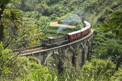 Dämpfen Sie Zug im Dschungel, Ella, Sri Lanka lizenzfreie stockfotografie