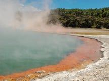 Dämpfen von Rotorua-heißen Quellen, Neuseeland Gelbe und blaue heiße Quellen mit dem steigenden Dampf, Bäume im Hintergrund stockfoto