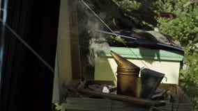 Dämpfender Bienenraucher stock video