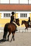 Dänischer Pferdenbauernhof Lizenzfreie Stockbilder