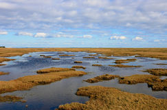 Dänisches Sumpfland Lizenzfreies Stockfoto