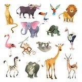 Dżungli dzikie zwierzęta Sawanna safari lasowej zwierzęcej ptasiej natury Africa tropikalni egzotyczni lasowi morscy ssaki, kresk ilustracja wektor