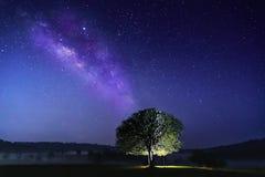 Długa ujawnienie fotografia z adrą Gościa rozciągnięty namiot pod dużym drzewem Gwiazdy i drogi mlecznej astronomia przy Thung ka zdjęcia royalty free