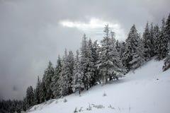 Dåligt vinterväder i moutainsna Arkivfoton