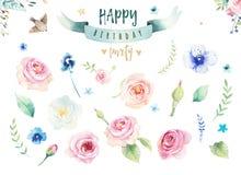Dé a acuarela aislada dibujo el ejemplo floral con las hojas, las ramas, las flores y las plumas arte del Watercolour del añil stock de ilustración