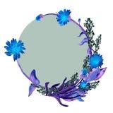 Dé a acuarela exhausta las flores y guirnalda azules de las hojas de los officinalis del calenula y lavanda y círculo verde oscur stock de ilustración