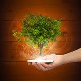 Dé a control el teléfono elegante con el árbol verde mágico Imágenes de archivo libres de regalías