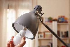Dé el cambio de una bombilla regular para el LED Imagen de archivo