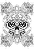 Dé el cráneo artístico exhausto en las flores para la página adulta del colorante Imagen de archivo