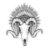 Dé el cráneo exhausto de la cabra en el capo emplumado zentangle de la guerra, alta DA ilustración del vector