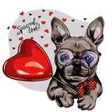 Dé el dogo francés exhausto con el baloon de la forma del corazón Tarjeta de felicitación del día de San Valentín del vector El p foto de archivo libre de regalías