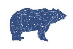 Dé el ejemplo exhausto del vector del oso negro de la constelación Ursa Major en la silueta del oso imágenes de archivo libres de regalías