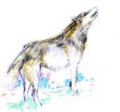 Dé el lobo exhausto con la línea y el marcador de la pluma Fotografía de archivo libre de regalías