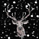 Dé el reno exhausto en el fondo negro con los copos de nieve que caen abajo alrededor de él Fotos de archivo