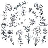 Dé el sistema floral exhausto con las hojas, flores Imagen de archivo libre de regalías