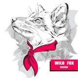Dé el zorro del dibujo con un pañuelo rosado en el cuello Ilustración del vector Fotografía de archivo libre de regalías