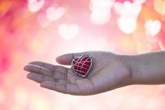 Dé está archivando al amante del amor o dan a tarjetas del día de San Valentín el regalo debajo del li caliente imágenes de archivo libres de regalías