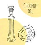 Dé la botella de aceite exhausta de coco con los puntos de la acuarela de la nata Imagen de archivo libre de regalías