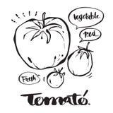 Dé la caligrafía exhausta en el tomate, letras, caligrafía i Foto de archivo libre de regalías