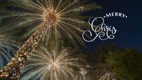 Dé la escritura del texto blanco de las letras de la caligrafía de la animación de la Feliz Navidad en fondo de las palmeras con  almacen de metraje de vídeo